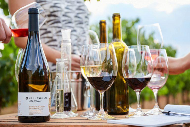 Gran Angular Mas Comtal, vins experimentals